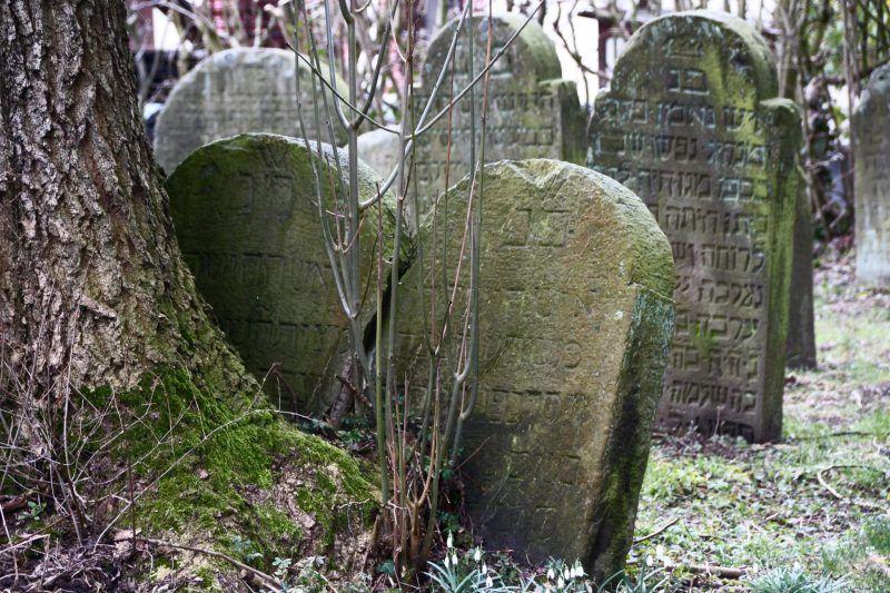 Sehenswurdigkeiten In Der Nahe Der Externsteine Burg Horn Externsteine Sehenswurdigkeiten Judischer Friedhof
