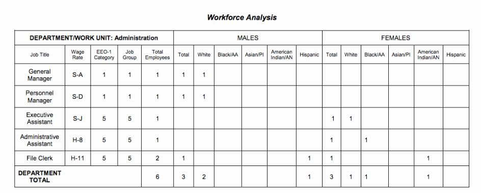 25 Affirmative Action Plan Sample In 2020 Action Plan Template