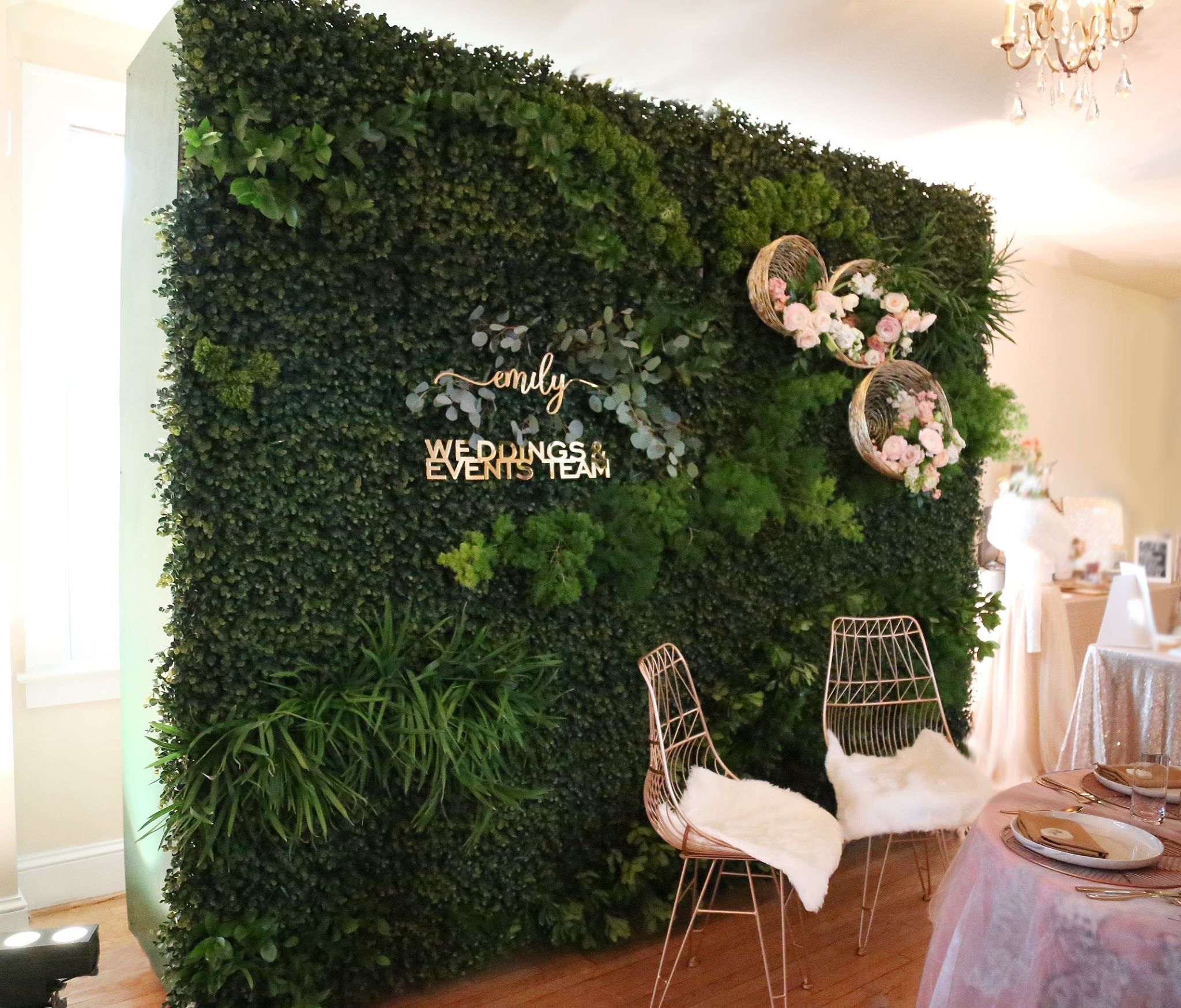 Boxwood Wall 10 Wide By 8 Tall