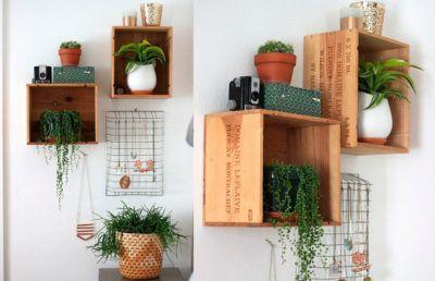 Estante com plantas dentro de casa como fazer decora es - Estantes para plantas ...