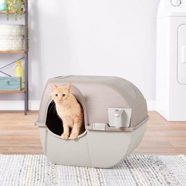 Buy Omega Paw Roll N Clean Cat Litter Box Large At Chewy Com Free Shipping And The Best Customer Service Cat Litter Box Hooded Litter Box Cat Litter