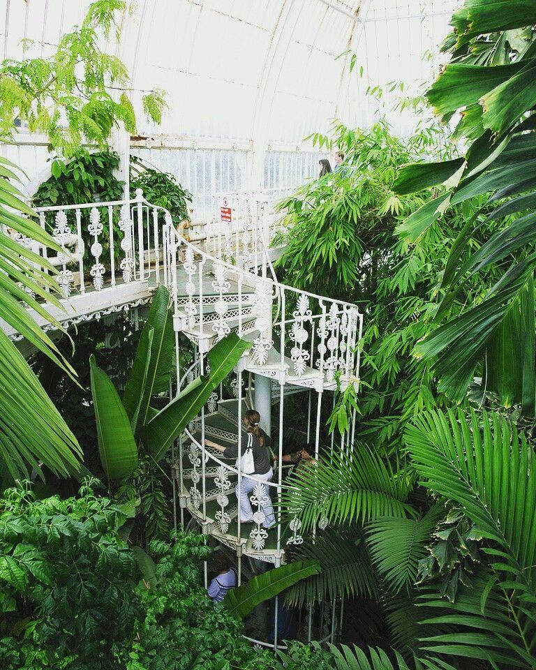 Pin Von Kanyanat Khanasa Auf Kew Garden Botanischer Garten Gewachshaus Garten Gewachshaus