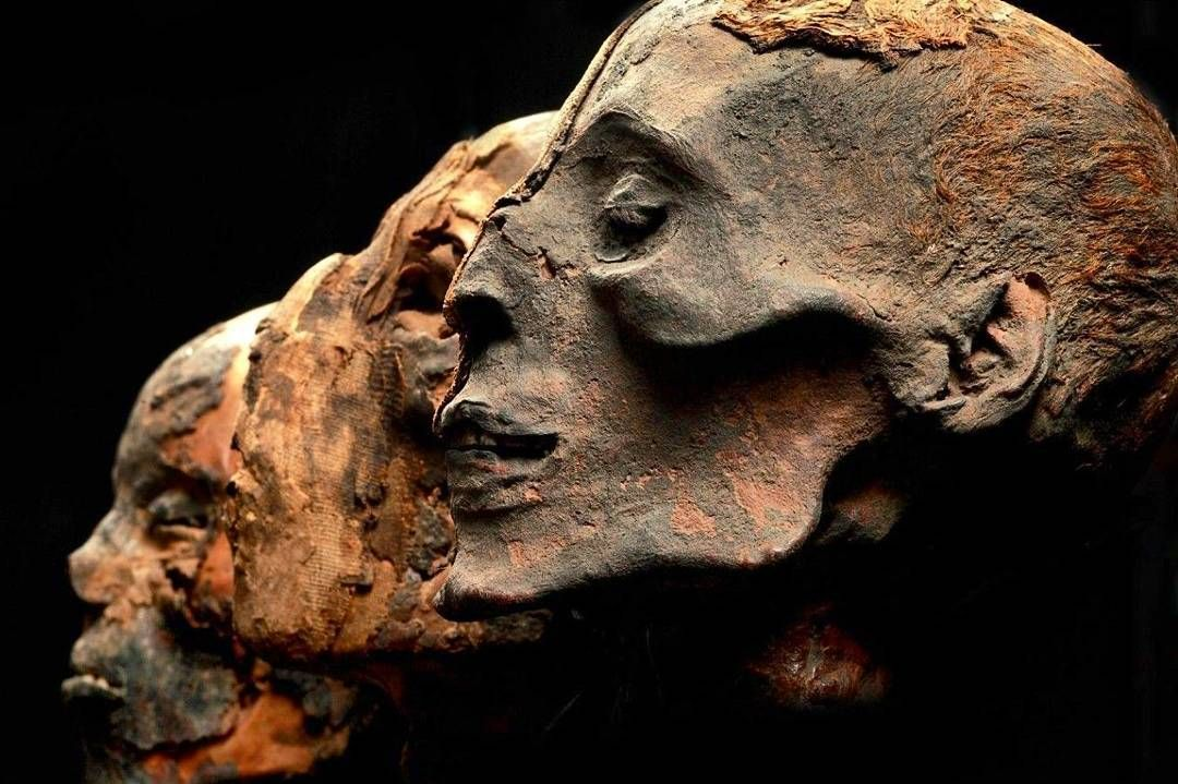"""Djoule Bba on Instagram: """"Egyptian mummie heads - Penn Museum ..."""