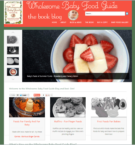 Visit the wholesome baby food guide book the official baby food news wholesome homemade baby food recipes forumfinder Gallery