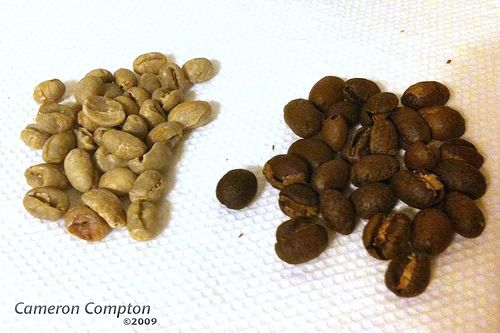 Green vs Roasted Coffee Beans