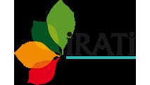 Hayedo de Irati