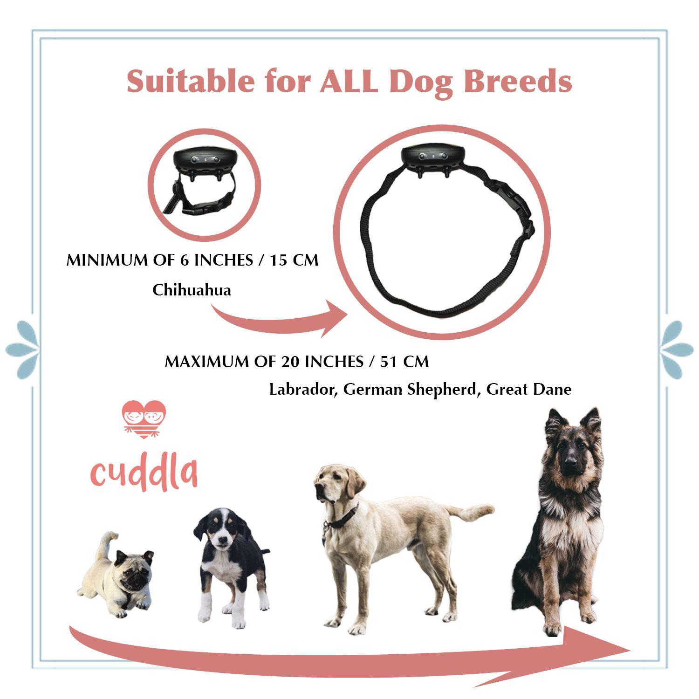 Antibarkcollar Dogcollar Dogtrainingcollar Soundandvibration Humanecollar Chihuahua Puppy Smalldogs Mediumdogs Largedogs Dog Breeds Great Dane Dogs