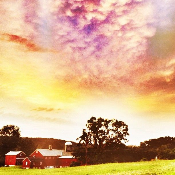 Local Farm Sussex County Nj Places To Go Sussex County Morris County