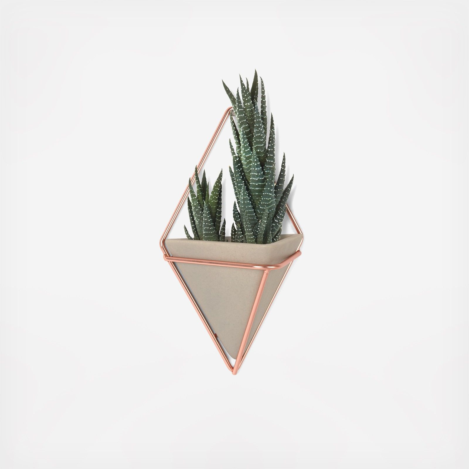 These Wall Mounted Vessels Where Ceramic Vessels Drop In A Diamond Shape Wire Frame Can Be Arranged In A Multitu Wall Planter Wall Planters Indoor Copper Wall