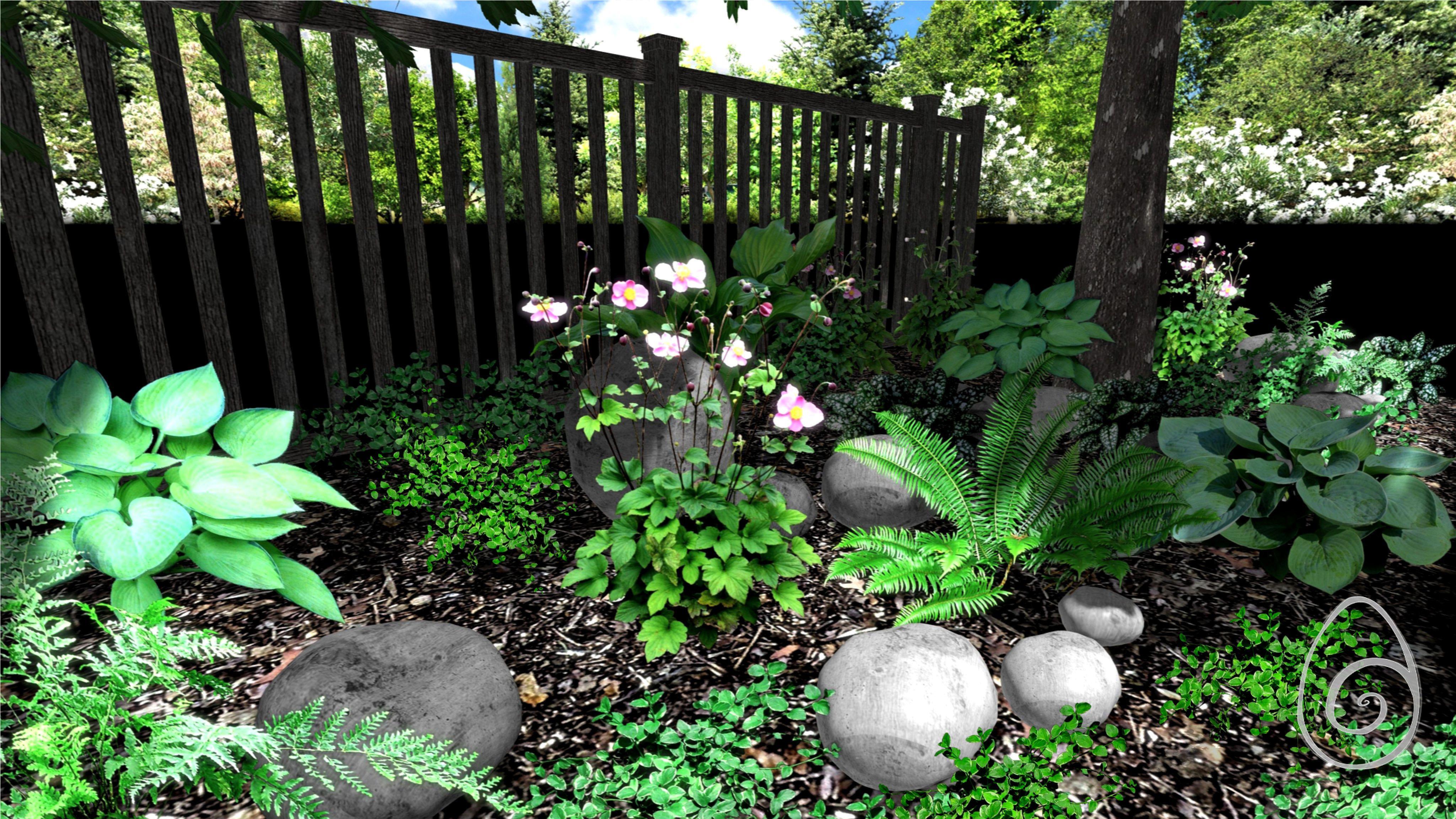 Jak Zaprojektowac I Pielegnowac Rabate Pod Drzewami Plants Pods