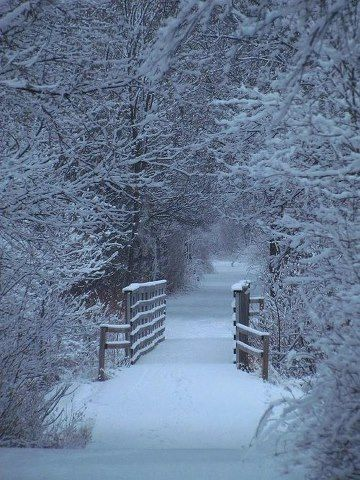 Place for a perfect winter walk.