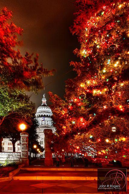 Austin Texas Capitol Christmas Tree   Christmas lights ...