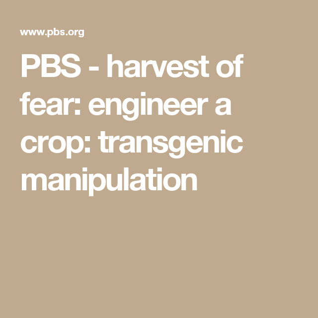 Pbs Harvest Of Fear Engineer A Crop Transgenic Manipulation