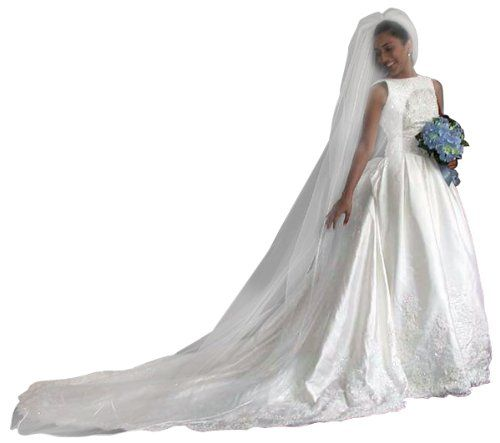 Glimmer Diamond White 1 Tier Cathedral Swarovski Crystal Rhinestones Bridal Wedding Veil Satin Edge Shop Ginger Wedding,http://www.amazon.com/dp/B006HYLF2U/ref=cm_sw_r_pi_dp_5stgtb0HMT87BRJZ