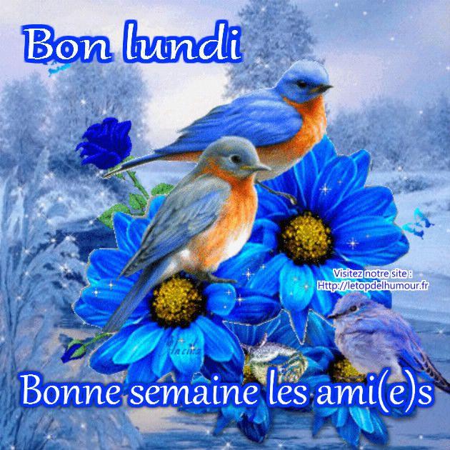 Bonjour tout le monde - Page 10 6bb93cfa7f88f49eaa7c133e53db0921