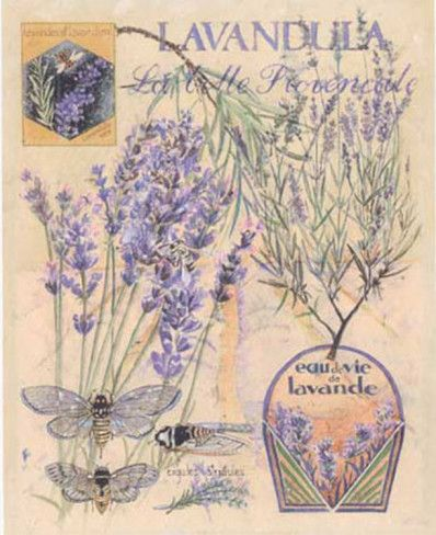 Poster La Bell Provencale by Laurence David