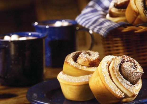 I found this recipe for Cinnamon Cocoa Breakfast Rolls, on Breadworld.com. You've got to check it out!