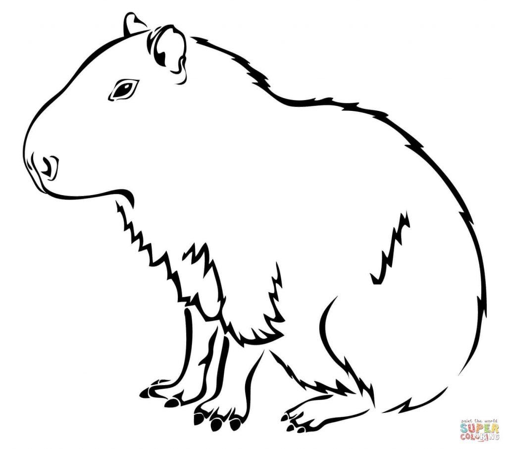 Easy Capybara Coloring Pages Free Coloring Sheets Coloring Pages To Print Coloring Pages Animal Coloring Pages