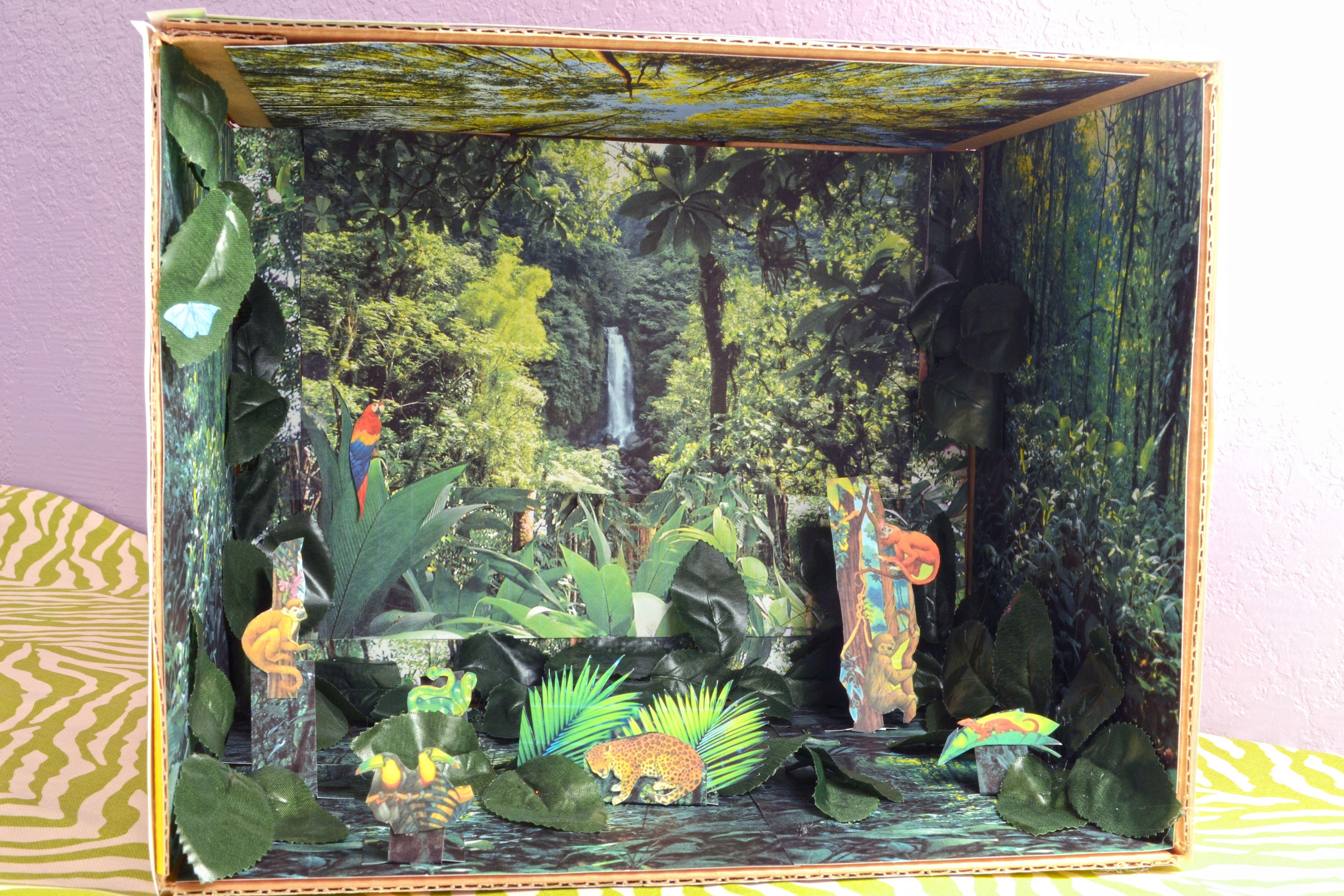 How to Make a Rain Forest Diorama