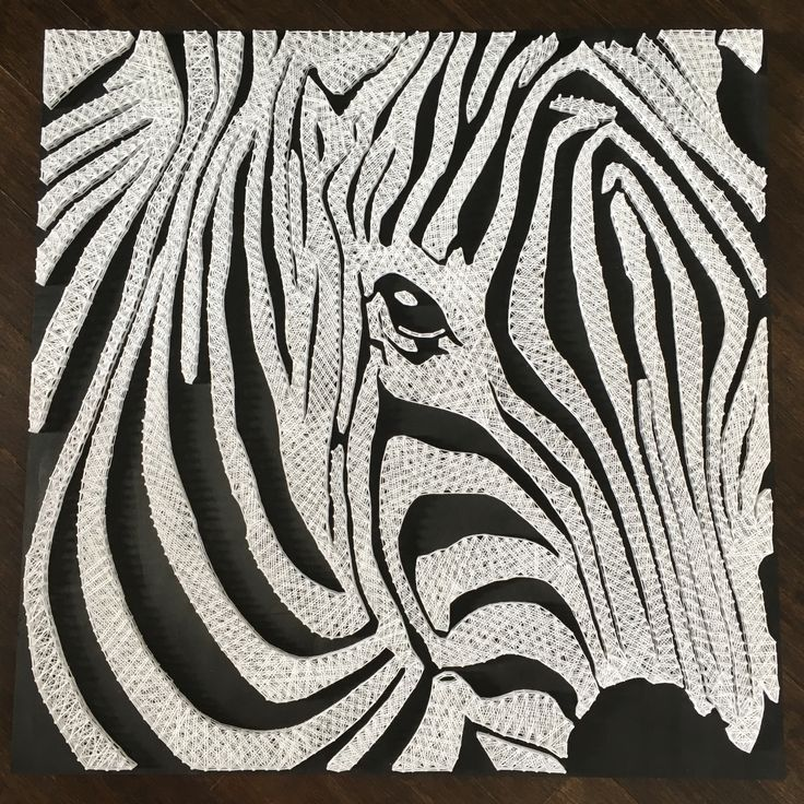 String Art Zebra By Camille String Art Pinterest