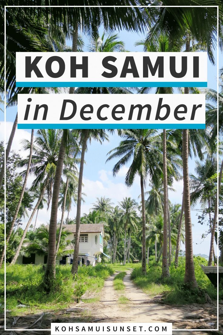 Koh Samui In December Weather What To Expect And Faqs