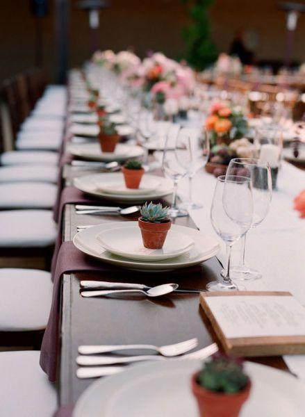 Regalo para invitados de boda plantas como regalo de invitados plants wedding favors - Regalos de boda para invitados ...
