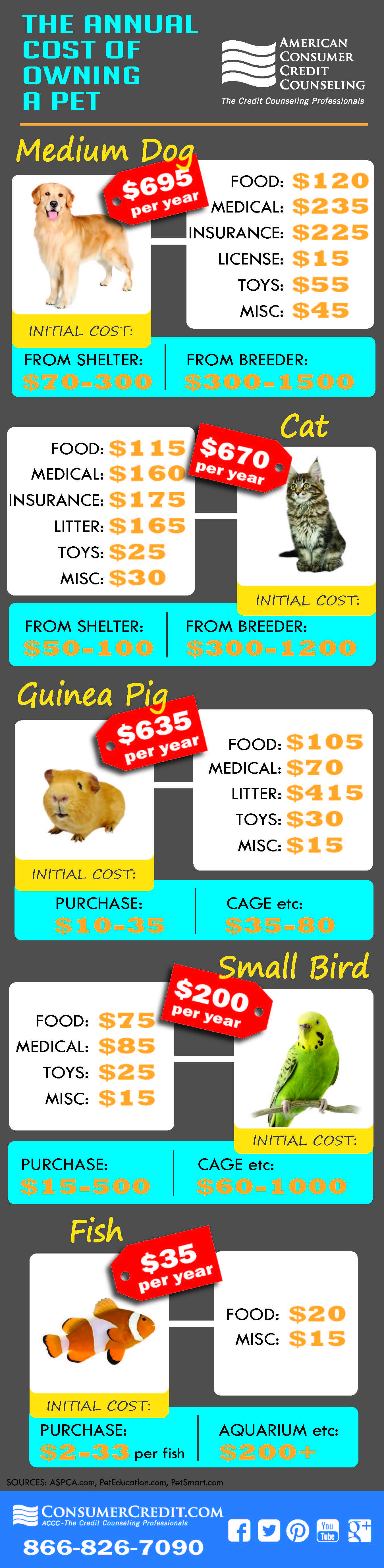 Cost Of Owning A Pet Can Be Surprising Check Your Budget