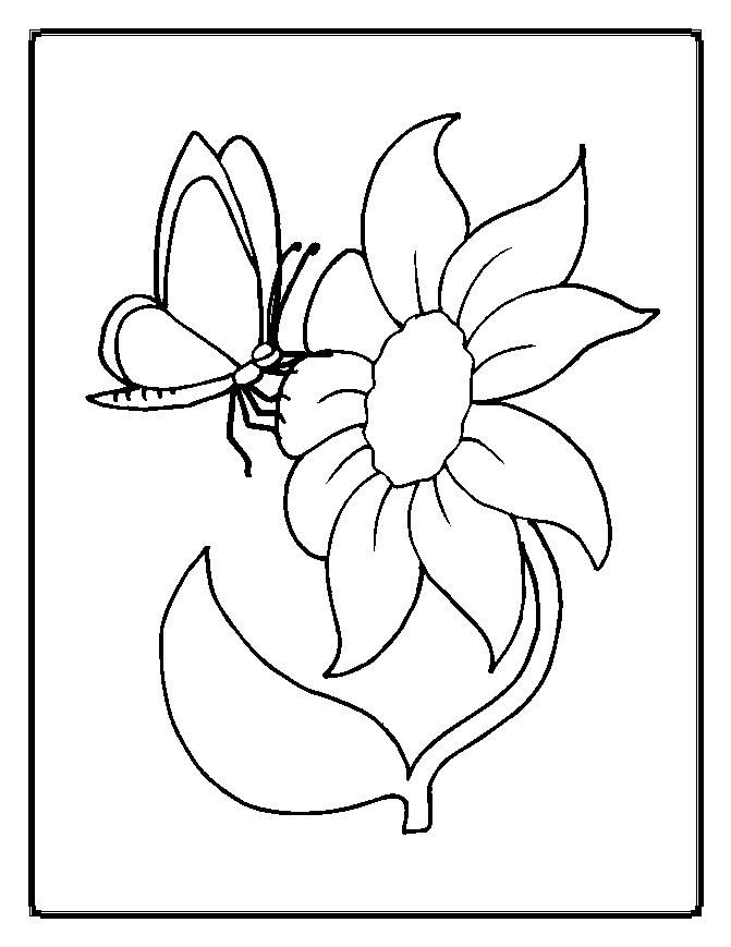 Flower coloring pages flowers coloring pages 21