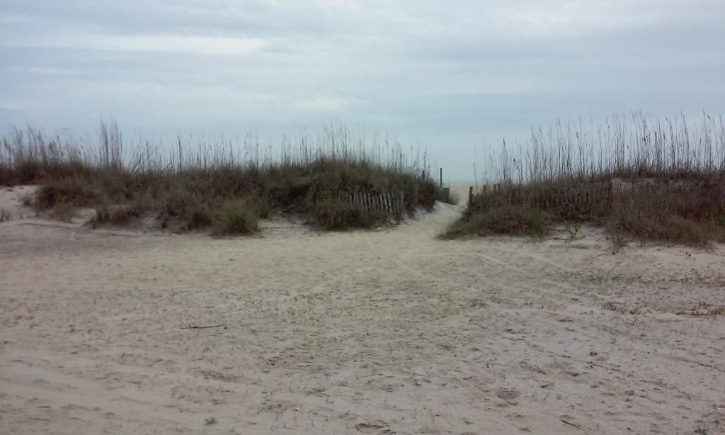 Tybee Island Beach What A Relaxing Should Be See 1 484 Traveler Reviews