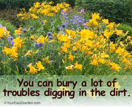 Garden Quotes Favorite Gardening Quotes For The New Year  Your Easy Garden