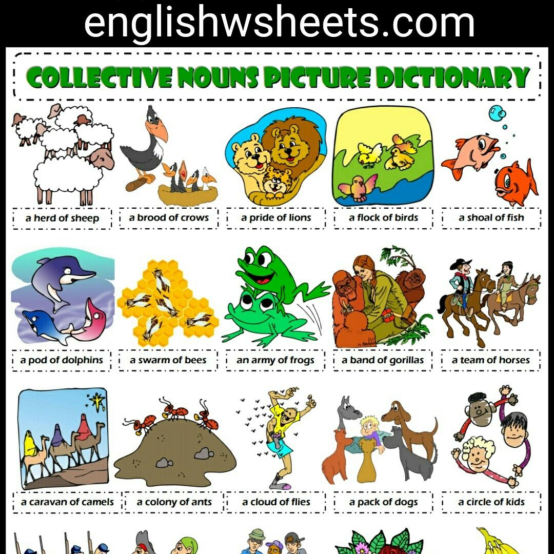 Collective Nouns Esl Printable Picture Dictionary For Kids Collective Nouns Esl Printable