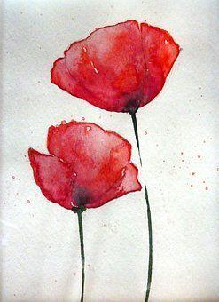 Mohn Aquarell Blute Pflanze Blumen Blumen Aquarell Aquarell