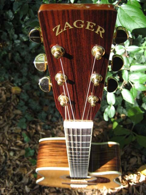 Zager Guitar Reviews Guitar Reviews Easy Play Custom Guitars