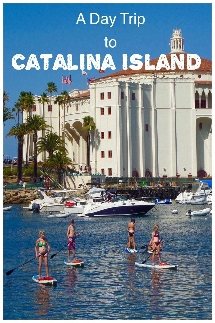 A Catalina Island Day Trip from Los Angeles. Favorite