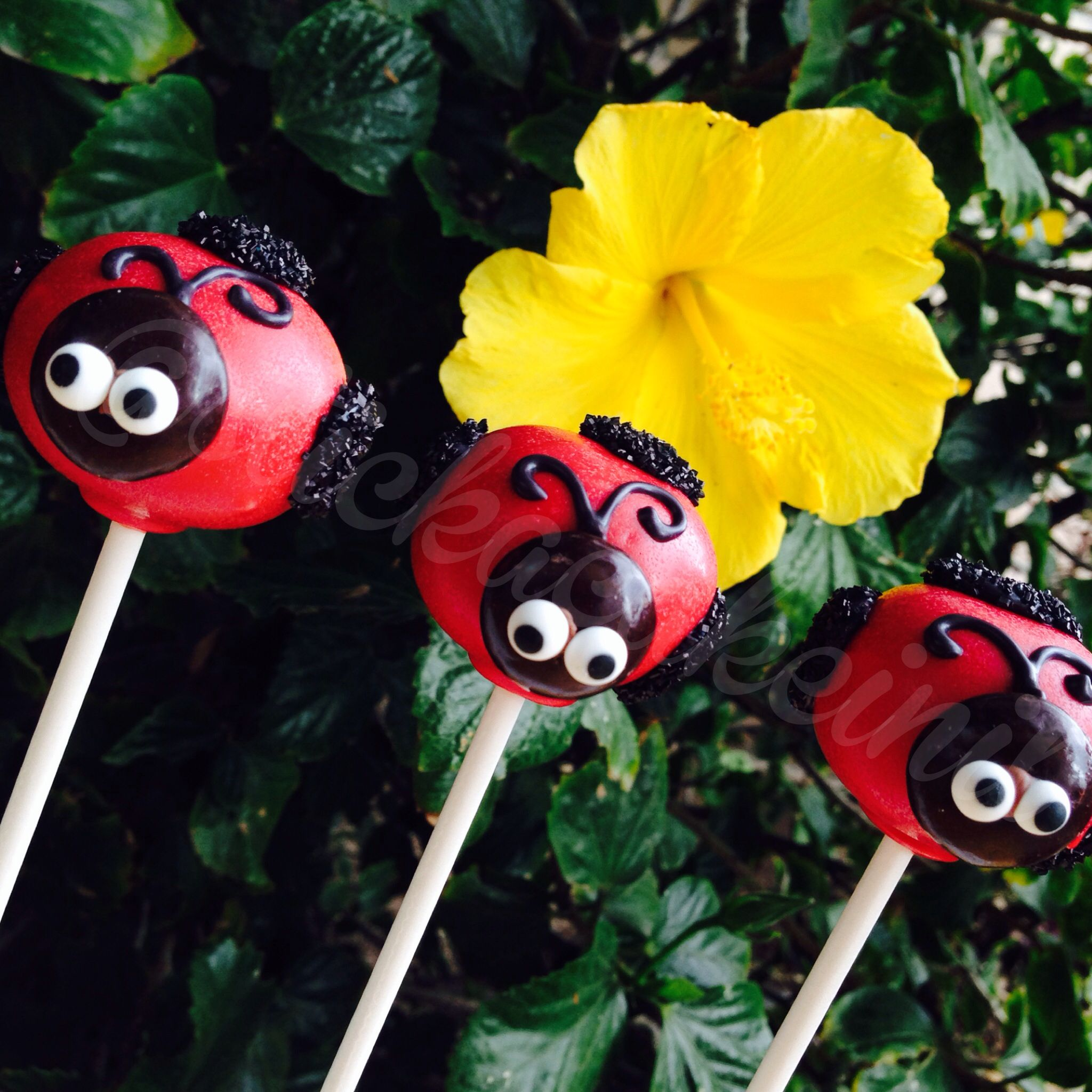Lady Bug Cake Pops by: Stick a Cake In It