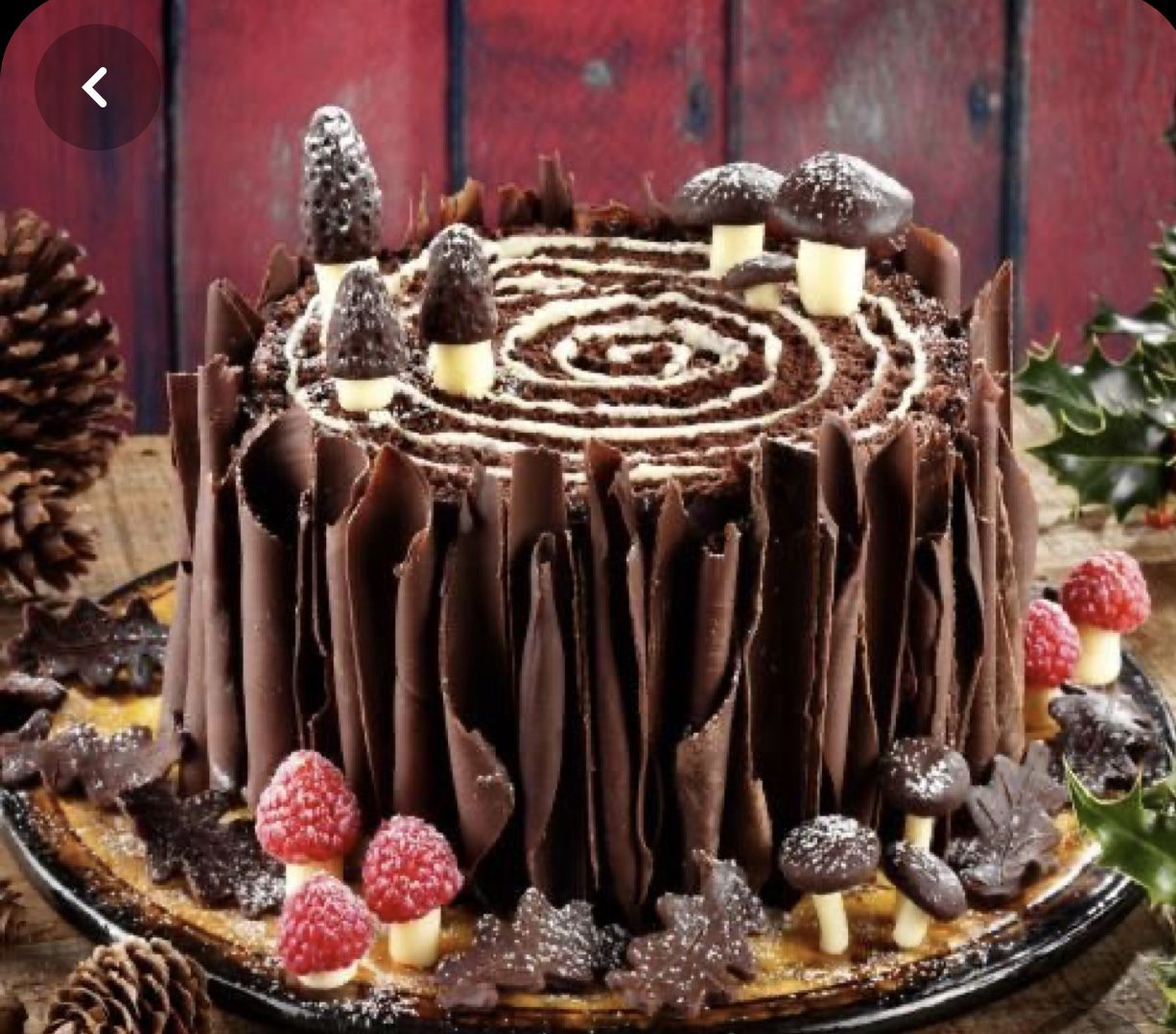 Pin by Cindy on Cake Logs in 2020 Yule log cake, Easy