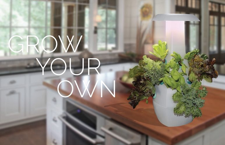 A Countertop Garden With An Automated Light And Watering 400 x 300