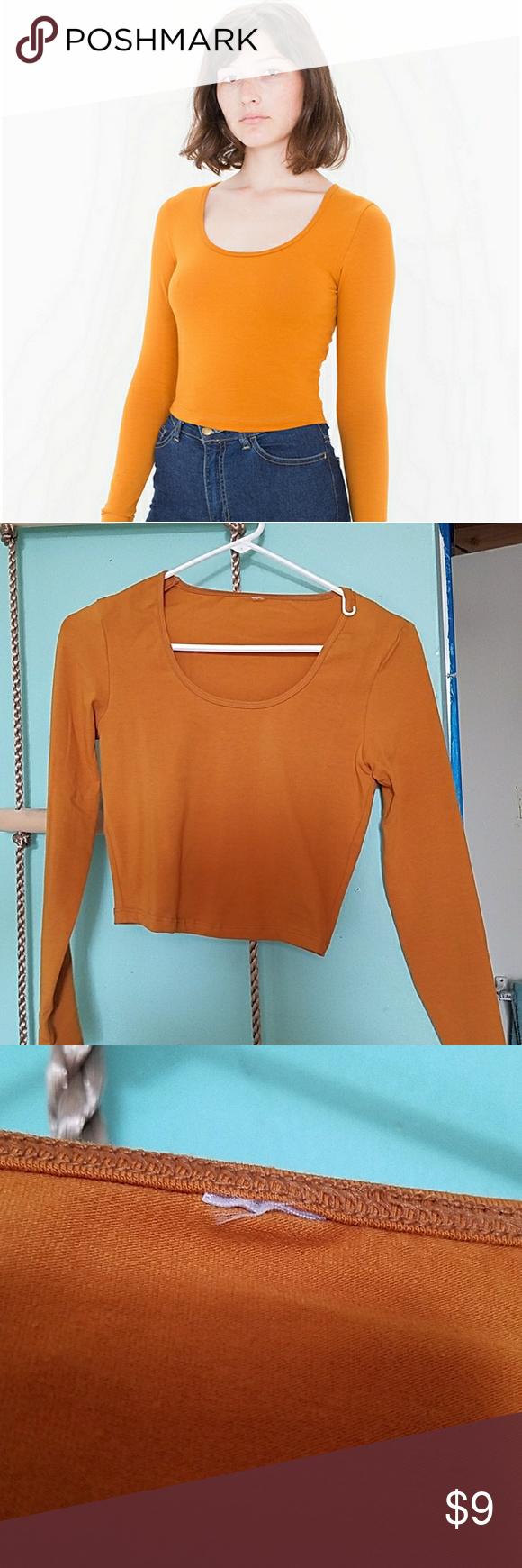 8dd7049bba888e American Apparel Reed Top Burnt orange long sleeve crop top. Darker color  than in AA photo