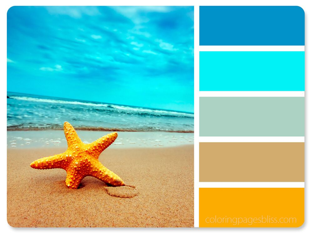 Adult Coloring Pages With Images Beach Color Palettes Beach