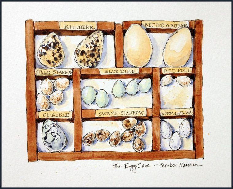 The Egg Case - http://jeanmackayart.com