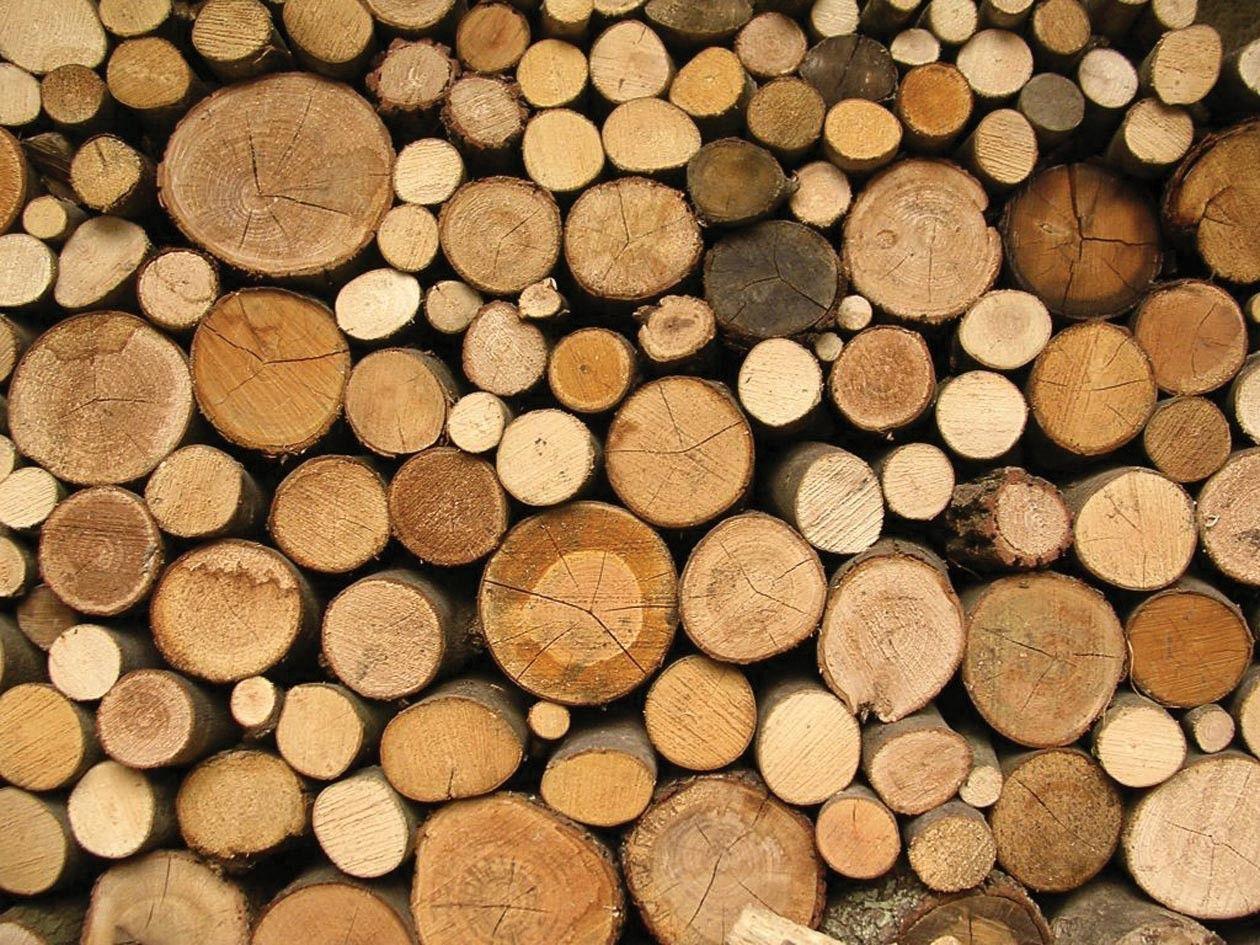 Timber Shop wallpaper, Spoonflower, Furniture fix