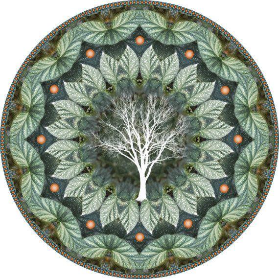 Cicada Treeflower Mandala Art Botanical Mandala Mandala