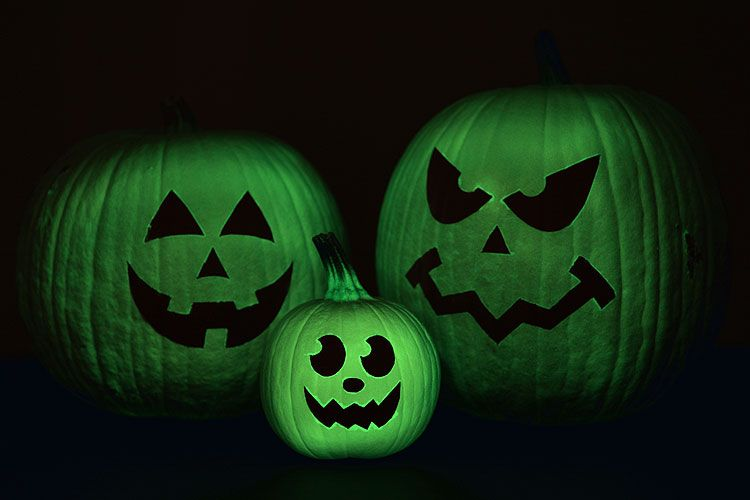 These glow in the dark pumpkins are SO COOL! They look amazing in the dark, and look ghostly in the light. Such a fun and easy no-carve pumpkin idea for Halloween!
