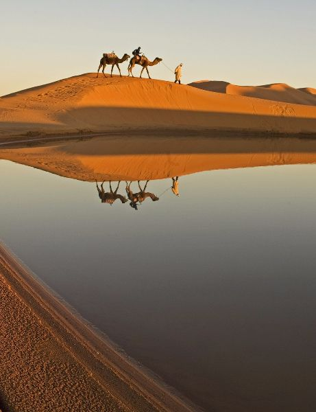The 11 Most Beautiful Deserts in the World