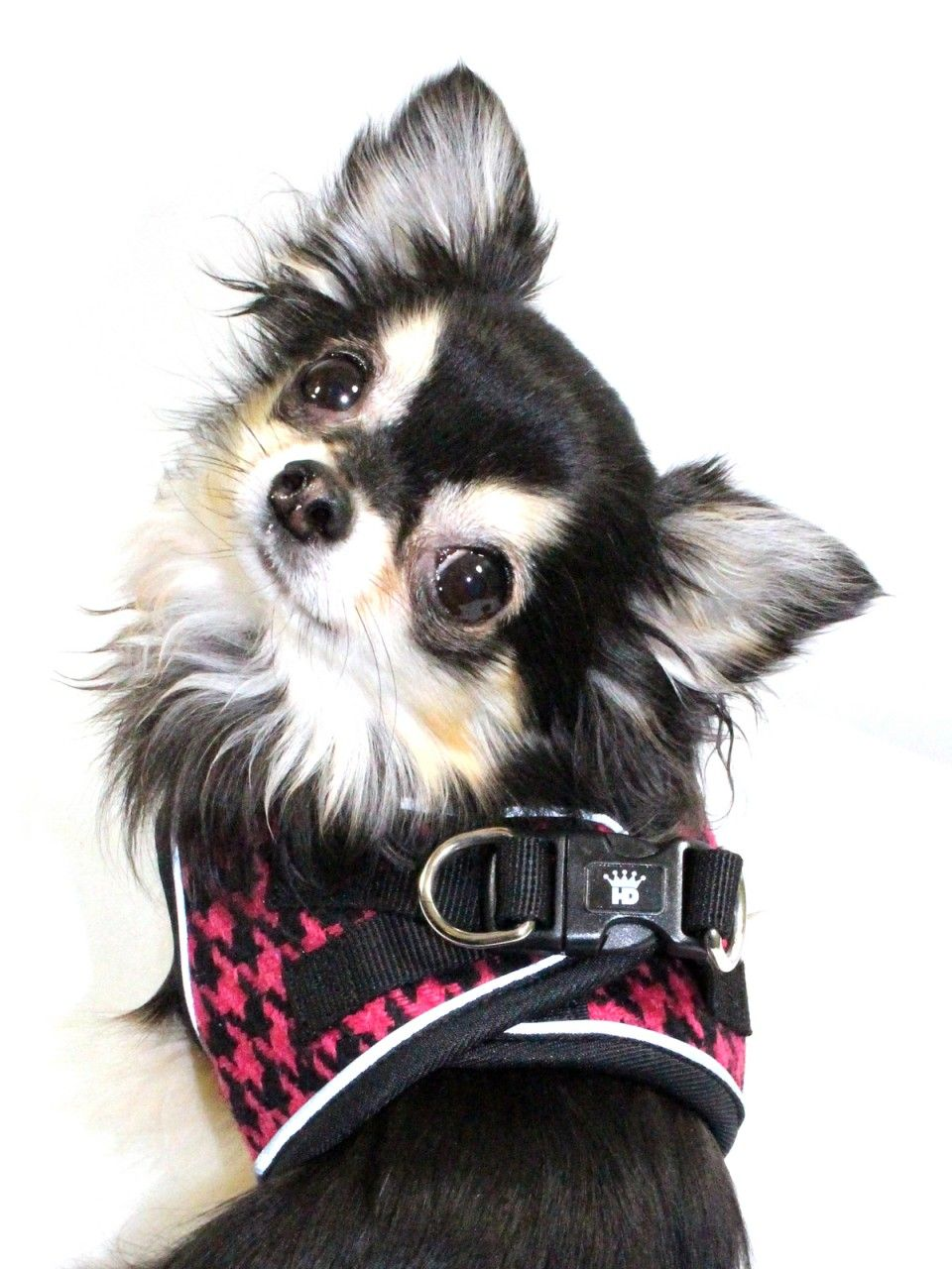 Ez Reflective Houndstooth Harness Vest Pink Black No Choke