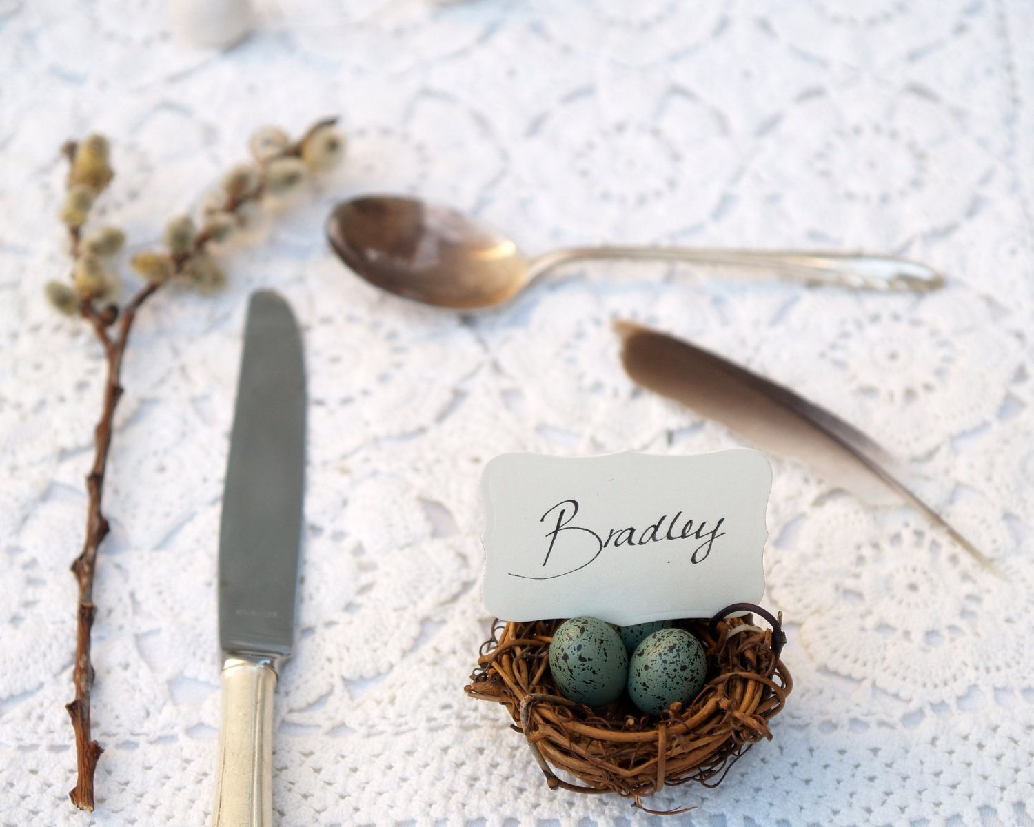 Wedding Place Cards, Spring Nest Favor Robin Egg Blue 20 Easter ...