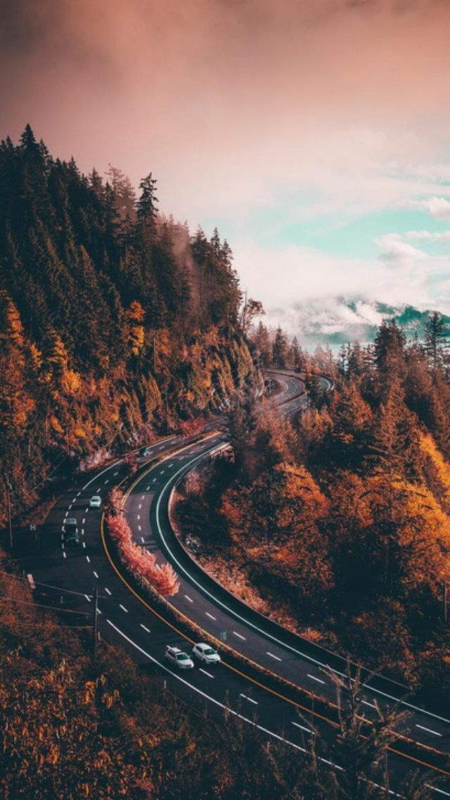 Photo of Herbst, Tapete und Herbstlandschaftsbild – Today Pin