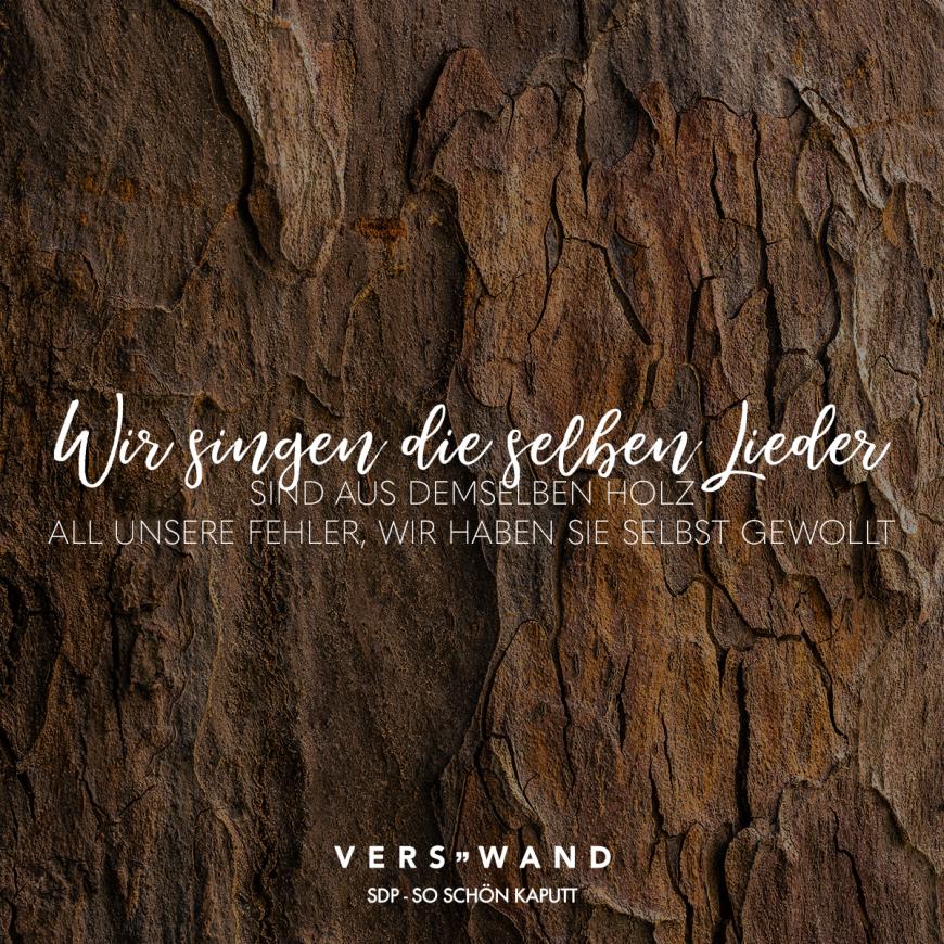 Visual Statements®️ Wir singen die selben Lieder, sind aus demselben Holz, all unsere Fehler, wir haben sie selbst gewollt. SDP Sprüche / Zitate / Quotes / Verswand / Musik / Band / Artist / tiefgründig / nachdenken / Leben / Attitude / Motivation #VisualStatements #Sprüche #Spruch #Verswand #soschönkaputt #ausdemselbenholz #freundschaft