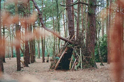 Summer 2012 Bucket list:  Item 6- Build an Awesome Tree fort.