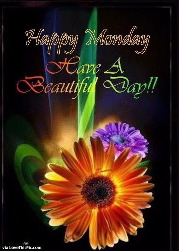 Happy monday have a beautiful day pictures photos and images for happy monday have a beautiful day pictures photos and images for facebook tumblr pinterest and twitter m4hsunfo